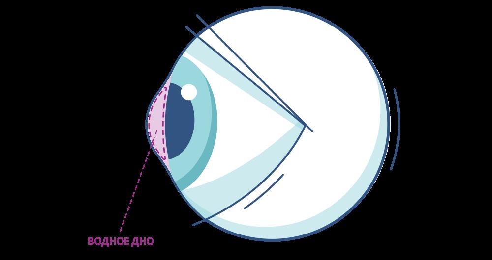 Остальная часть глаза